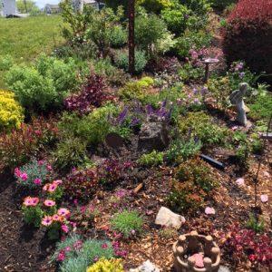 "Planted Yesterday Fairfield Connecticut ""Healing Garden"""